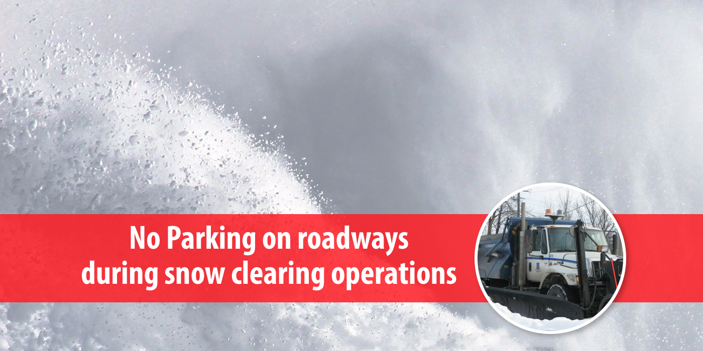 Image for Snow Clearing